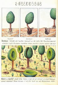 Codex Seraphinianus (1981) by Luigi Serafini. Hollow trees.